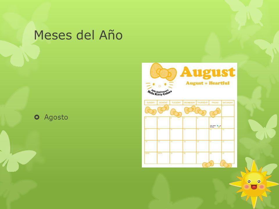 Meses del Año Agosto