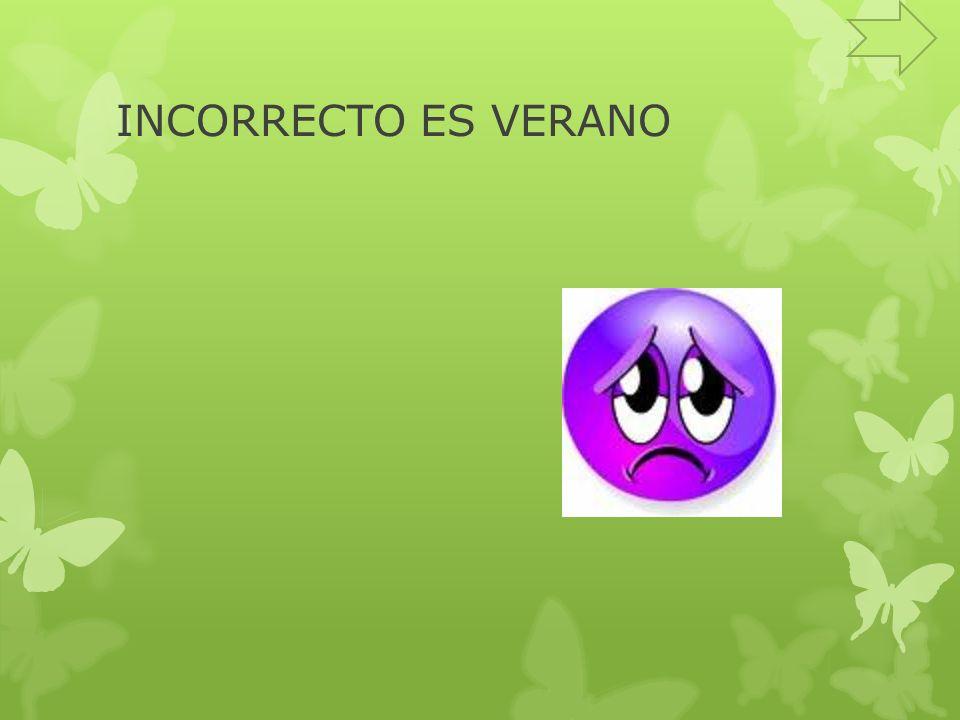 INCORRECTO ES VERANO