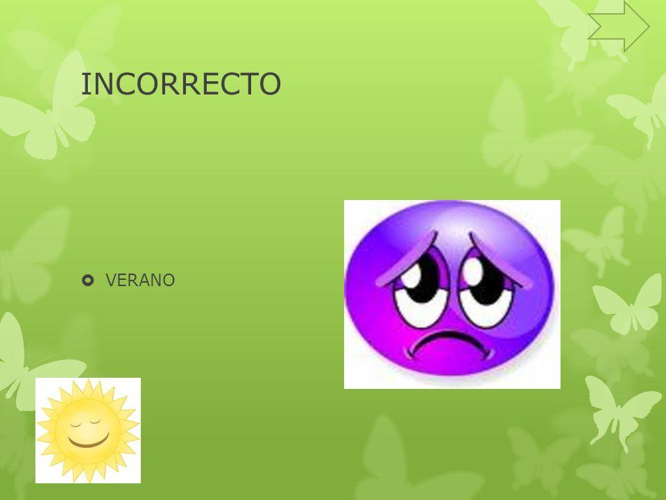 INCORRECTO VERANO