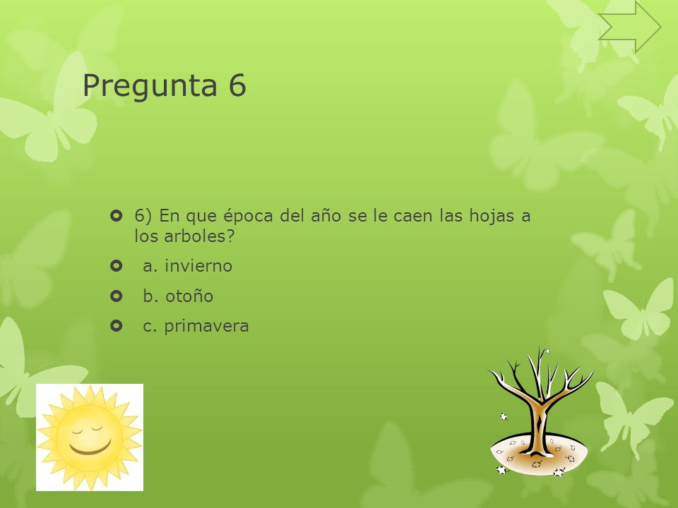 Pregunta 6 6) En que época del año se le caen las hojas a los arboles