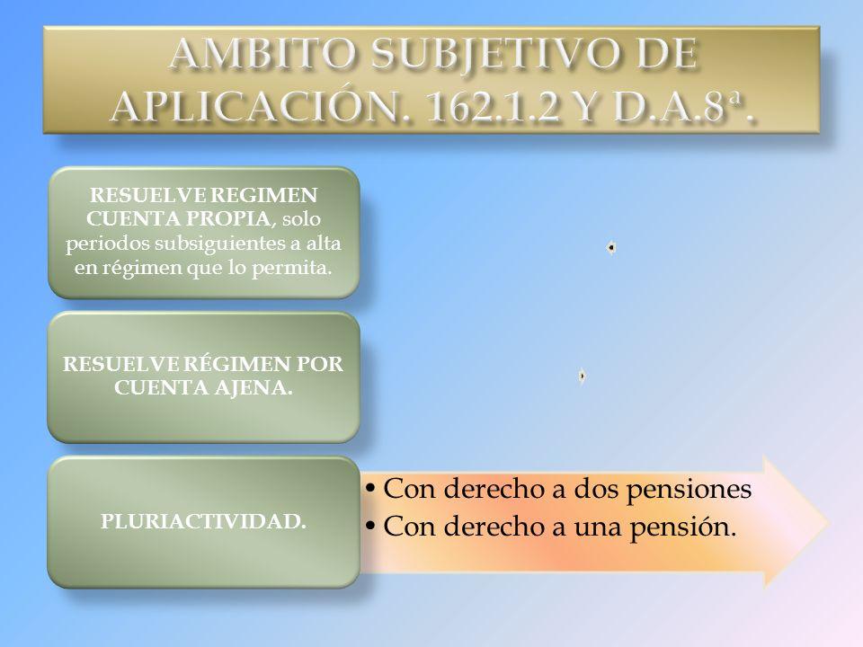 AMBITO SUBJETIVO DE APLICACIÓN. 162.1.2 Y D.A.8ª.