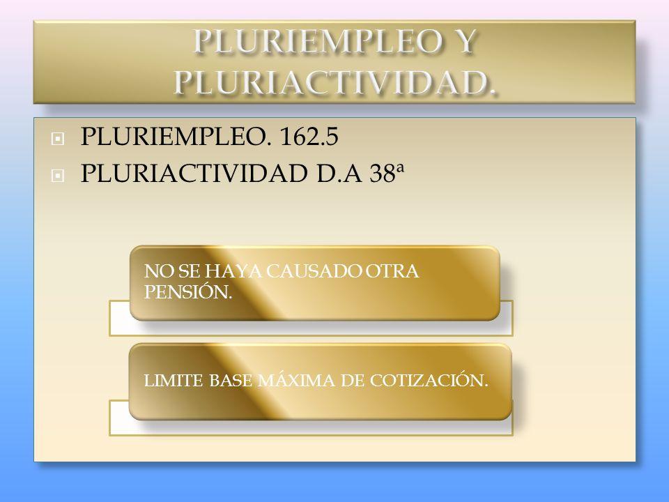 PLURIEMPLEO Y PLURIACTIVIDAD.