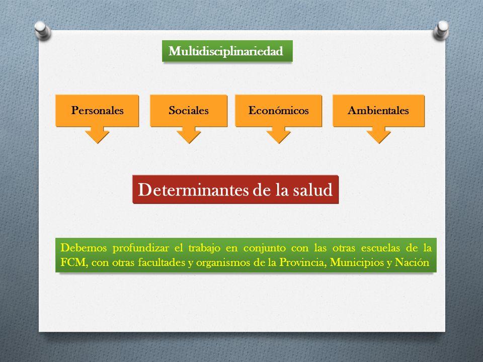 Multidisciplinariedad Determinantes de la salud