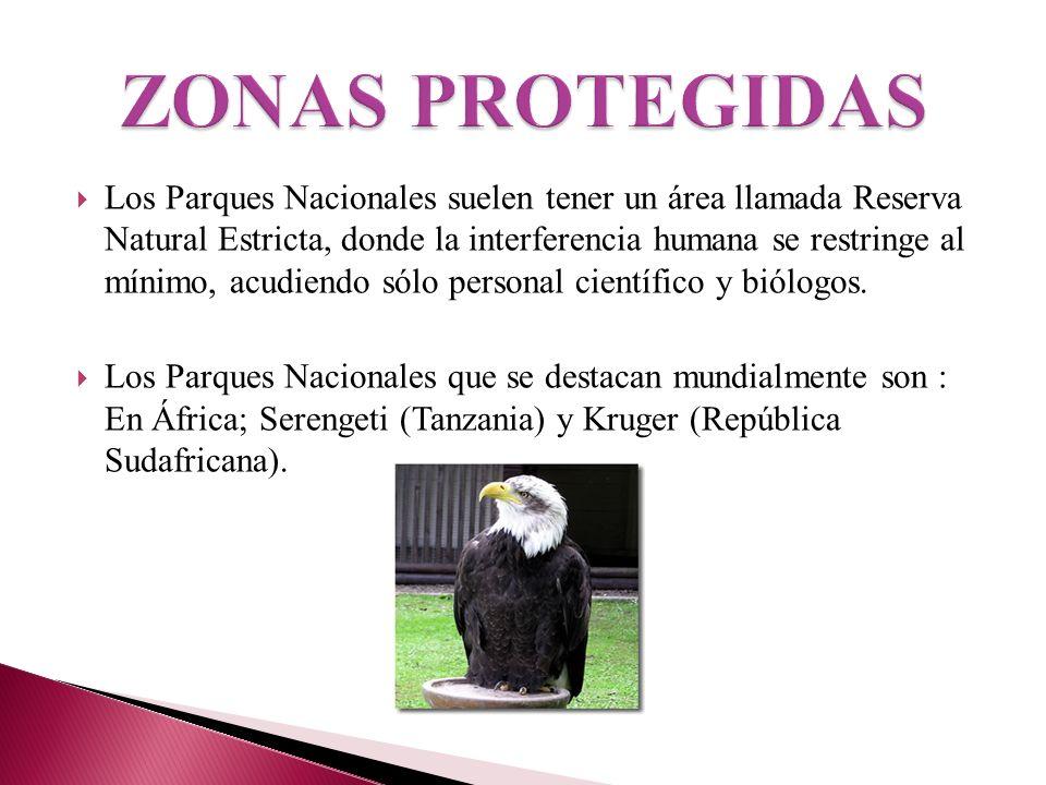 ZONAS PROTEGIDAS