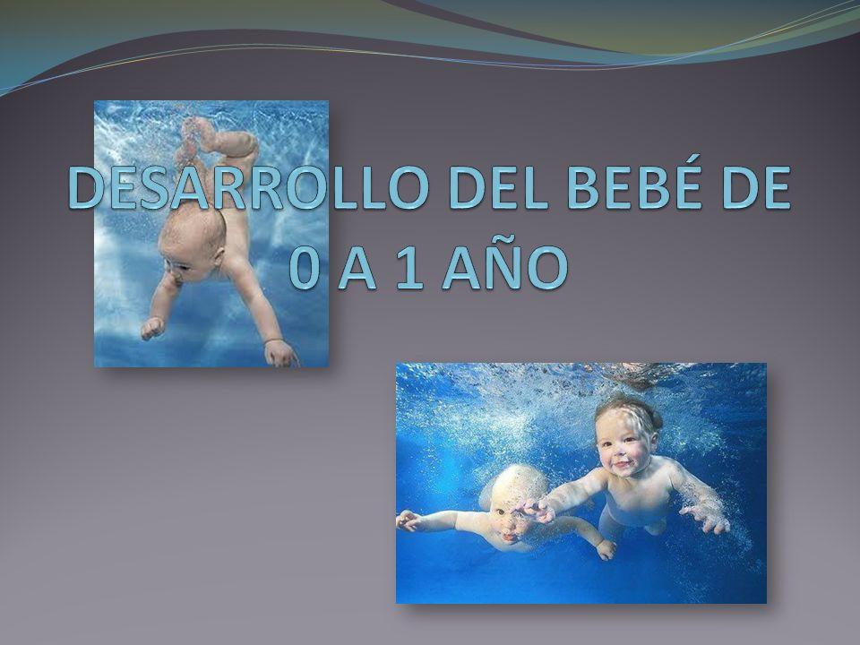 DESARROLLO DEL BEBÉ DE 0 A 1 AÑO