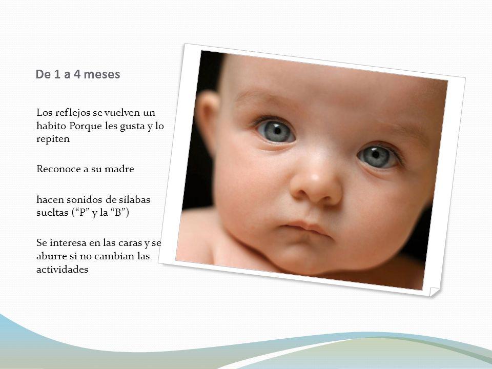 De 1 a 4 meses Los reflejos se vuelven un habito Porque les gusta y lo repiten. Reconoce a su madre.