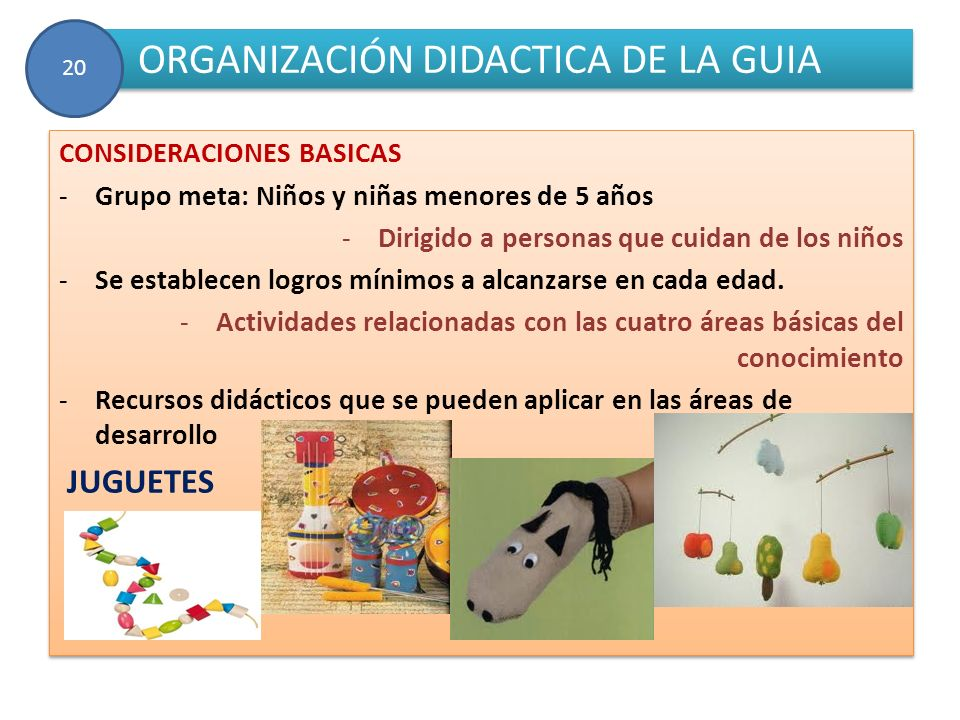 ORGANIZACIÓN DIDACTICA DE LA GUIA