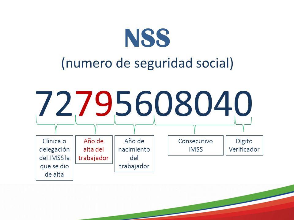 72795608040 NSS (numero de seguridad social)