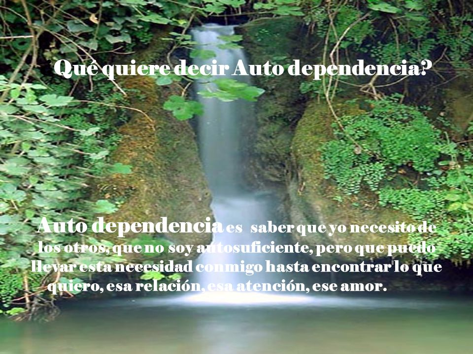 ¿Qué quiere decir Auto dependencia