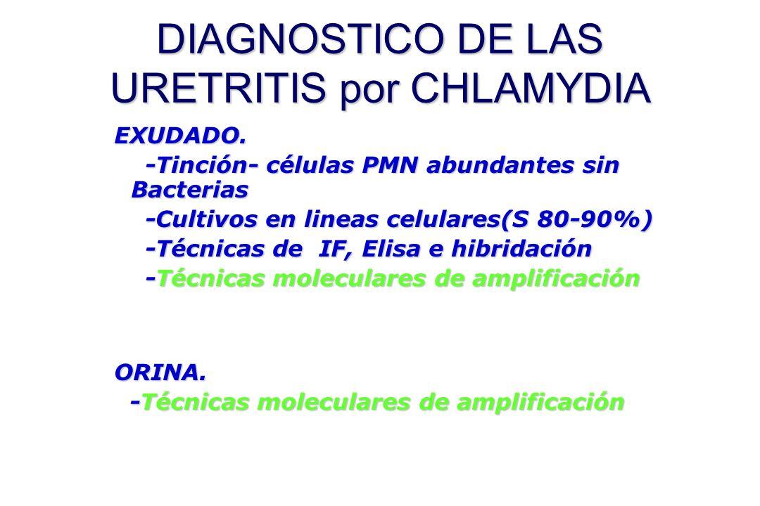 DIAGNOSTICO DE LAS URETRITIS por CHLAMYDIA