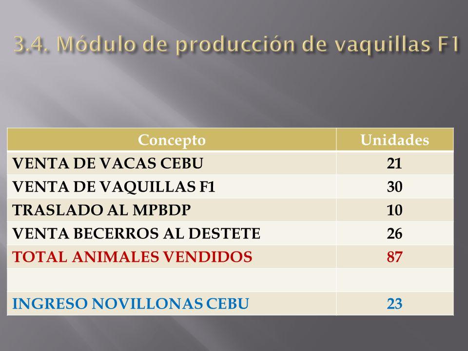 3.4. Módulo de producción de vaquillas F1