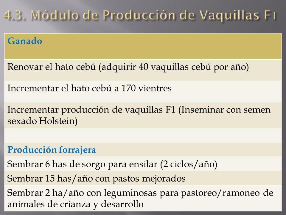 4.3. Módulo de Producción de Vaquillas F1