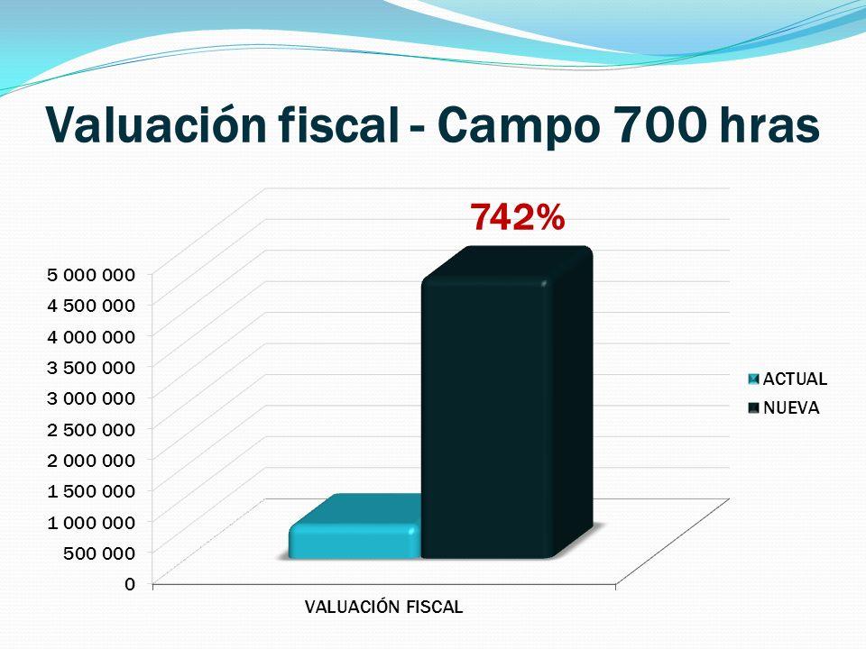 Valuación fiscal - Campo 700 hras