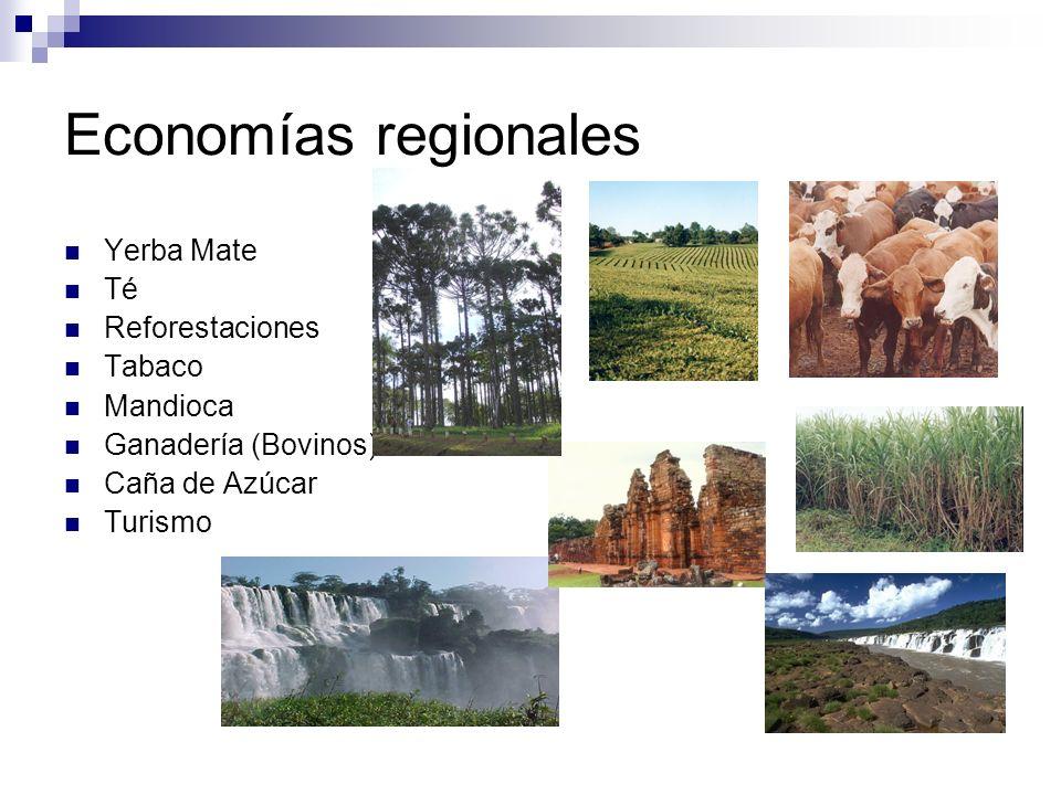 Economías regionales Yerba Mate Té Reforestaciones Tabaco Mandioca