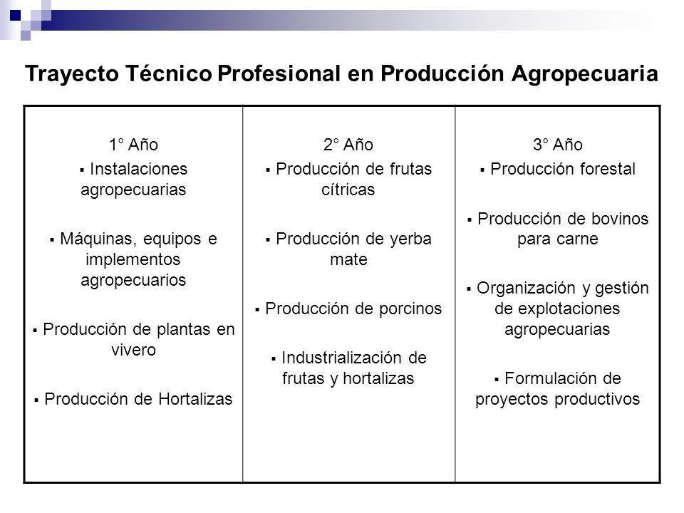 Trayecto Técnico Profesional en Producción Agropecuaria