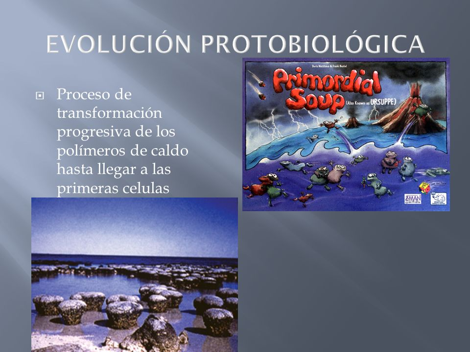 EVOLUCIÓN PROTOBIOLÓGICA