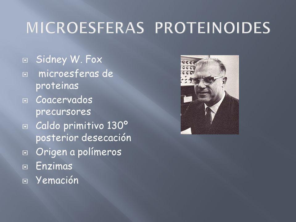 MICROESFERAS PROTEINOIDES