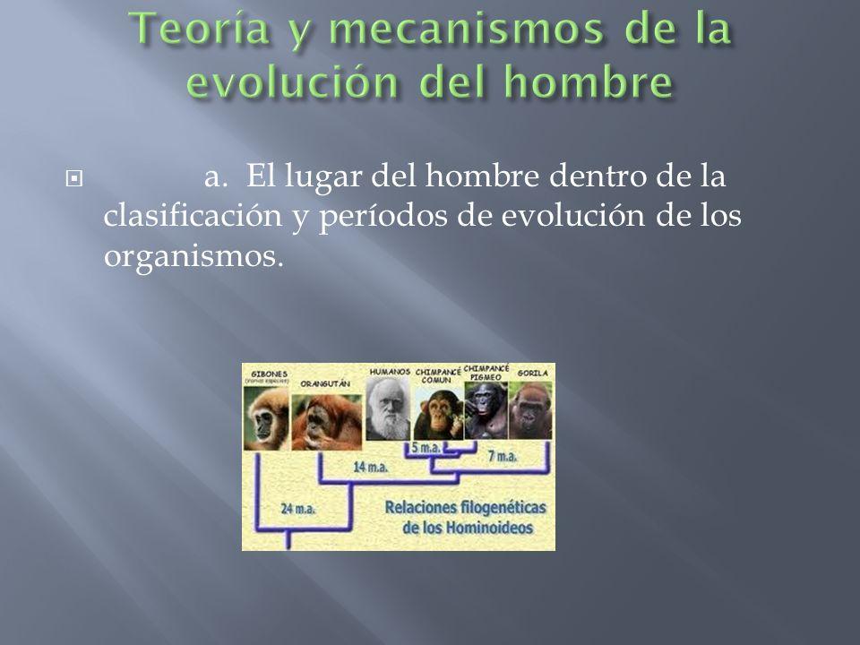 Teoría y mecanismos de la evolución del hombre