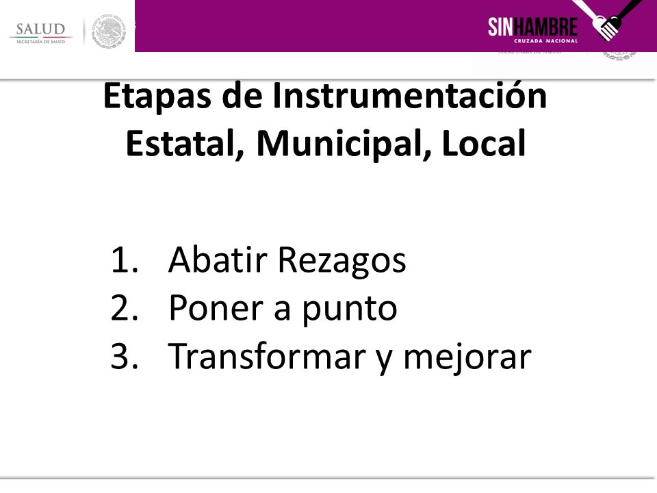 Etapas de Instrumentación Estatal, Municipal, Local