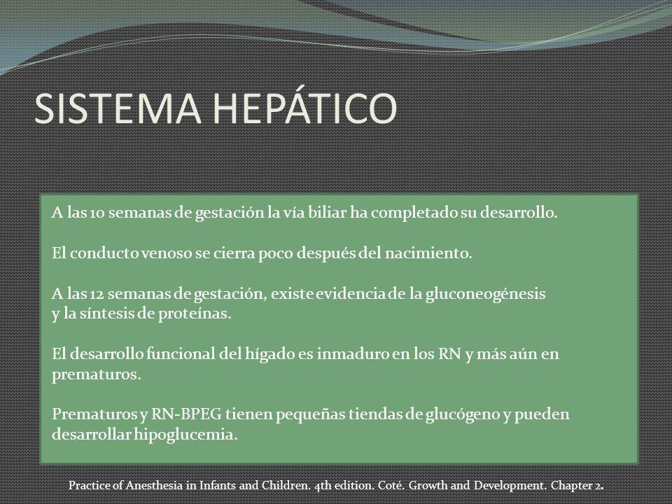 SISTEMA HEPÁTICO A las 10 semanas de gestación la vía biliar ha completado su desarrollo. El conducto venoso se cierra poco después del nacimiento.
