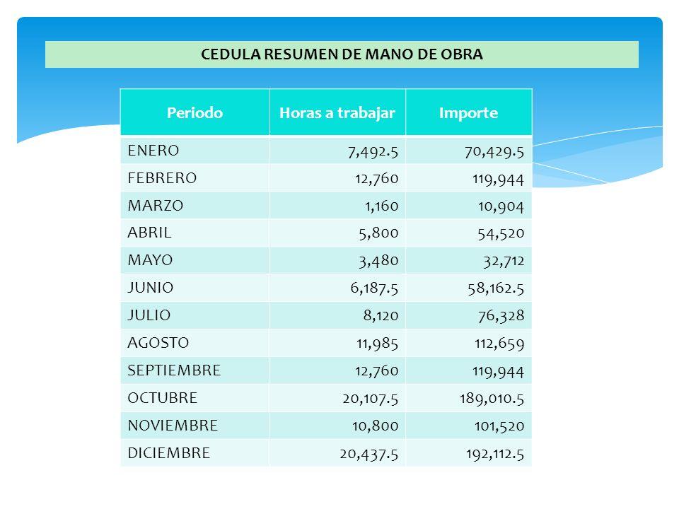 CEDULA RESUMEN DE MANO DE OBRA