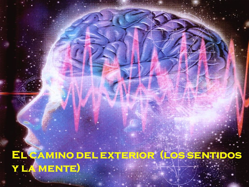 El camino del exterior (los sentidos y la mente)