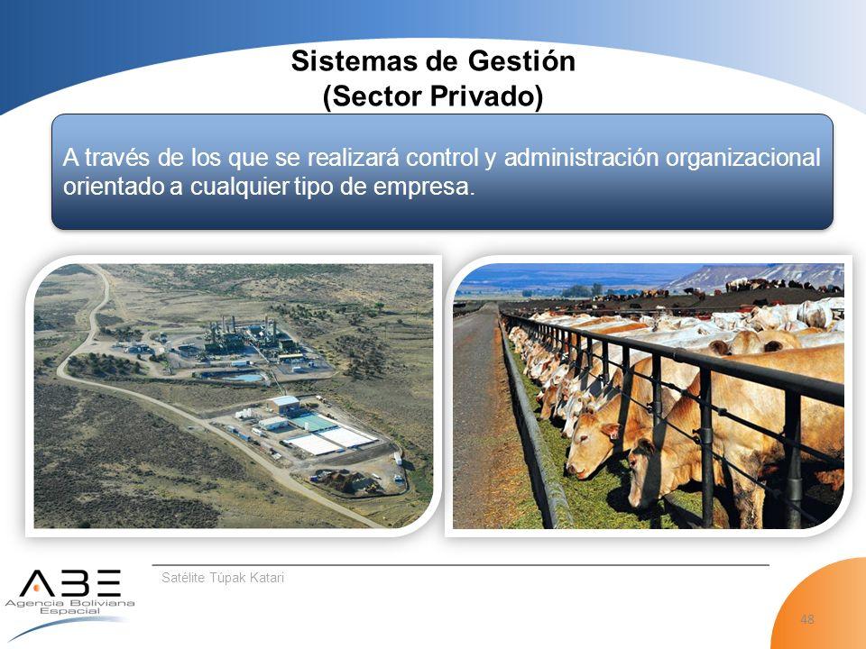 Sistemas de Gestión (Sector Privado)