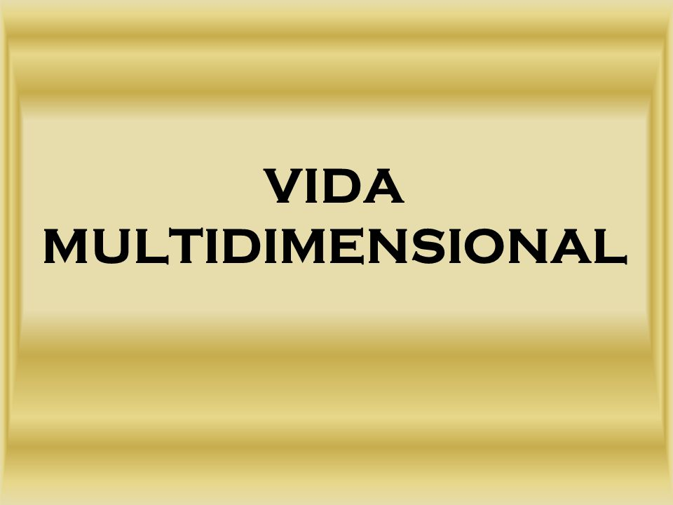 VIDA MULTIDIMENSIONAL