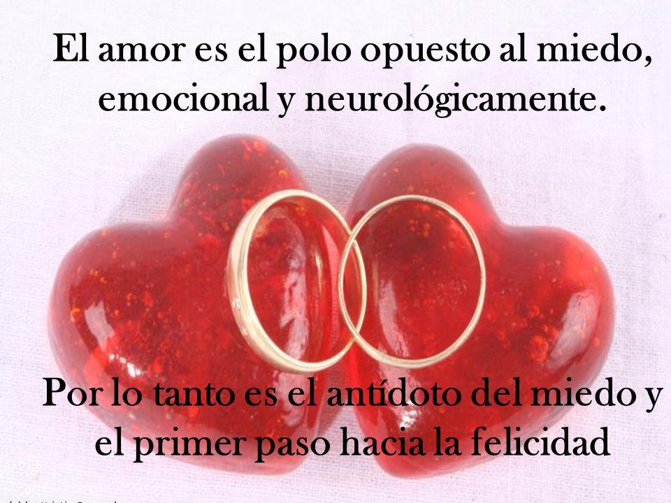 El amor es el polo opuesto al miedo, emocional y neurológicamente