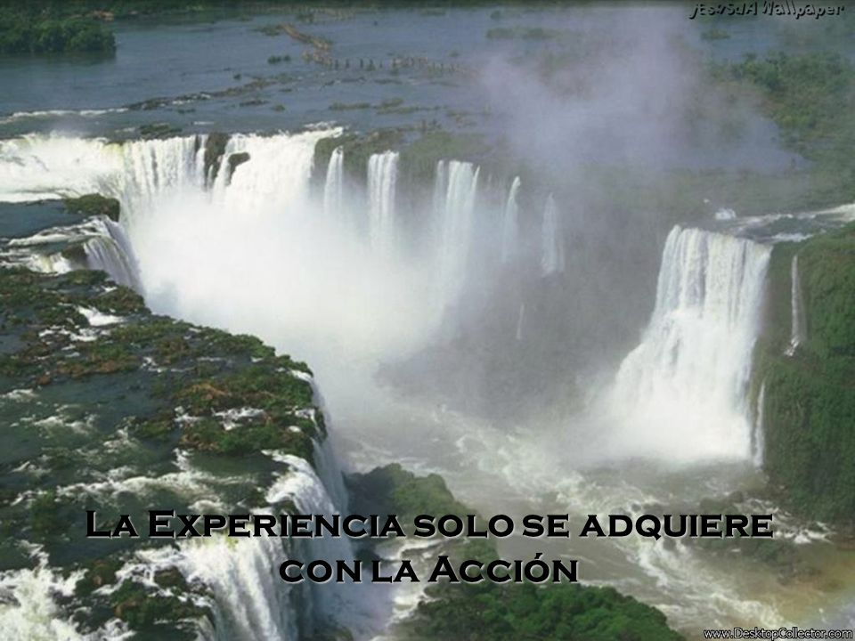 La Experiencia solo se adquiere con la Acción