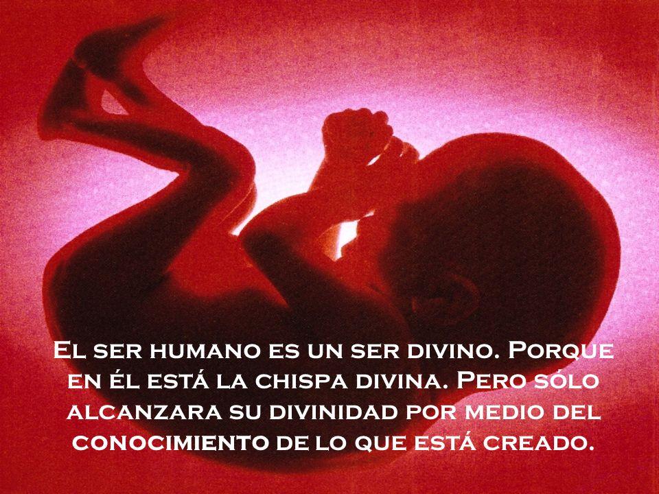 El ser humano es un ser divino. Porque en él está la chispa divina