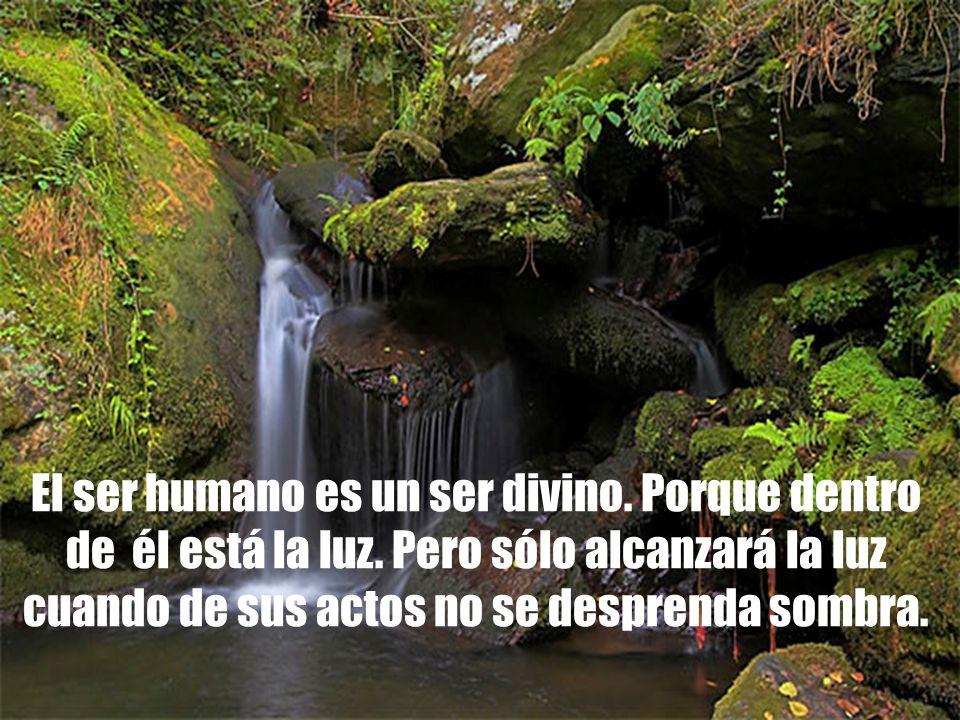 El ser humano es un ser divino. Porque dentro de él está la luz