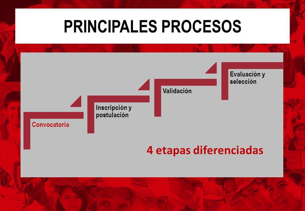PRINCIPALES PROCESOS 4 etapas diferenciadas Evaluación y selección