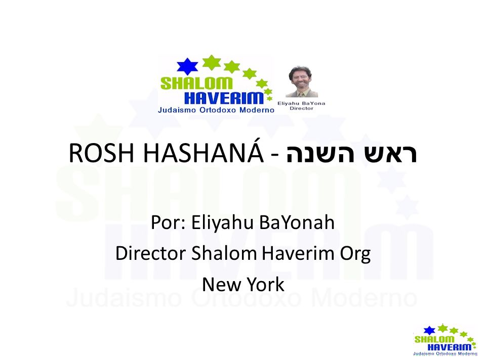 Director Shalom Haverim Org