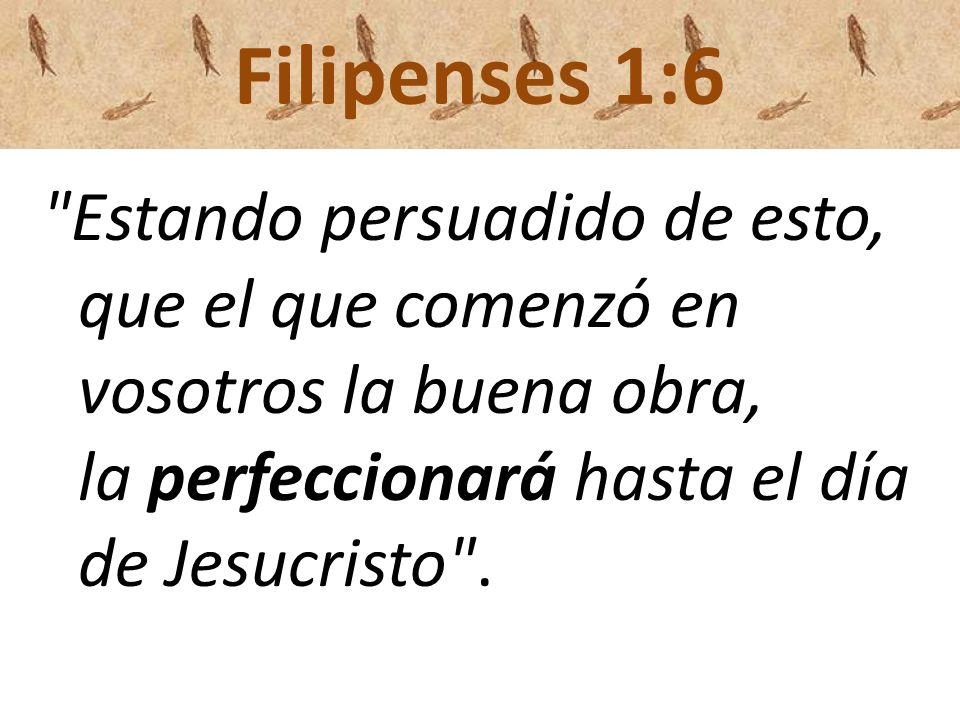 Filipenses 1:6 Estando persuadido de esto, que el que comenzó en vosotros la buena obra, la perfeccionará hasta el día de Jesucristo .