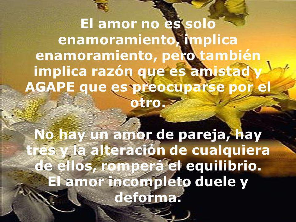 El amor no es solo enamoramiento, implica enamoramiento, pero también implica razón que es amistad y AGAPE que es preocuparse por el otro.