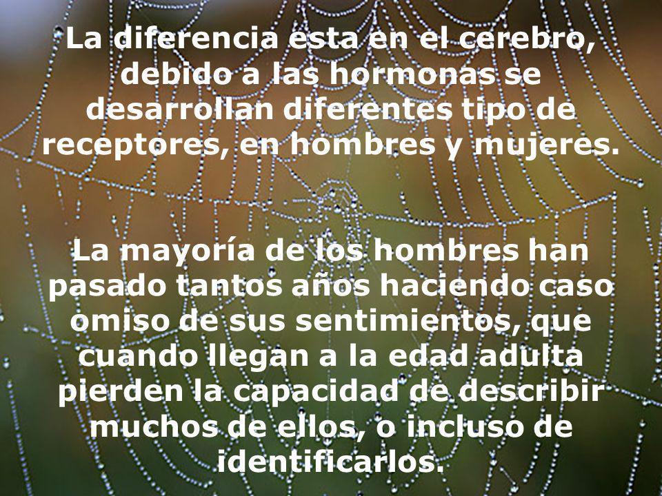 La diferencia esta en el cerebro, debido a las hormonas se desarrollan diferentes tipo de receptores, en hombres y mujeres.