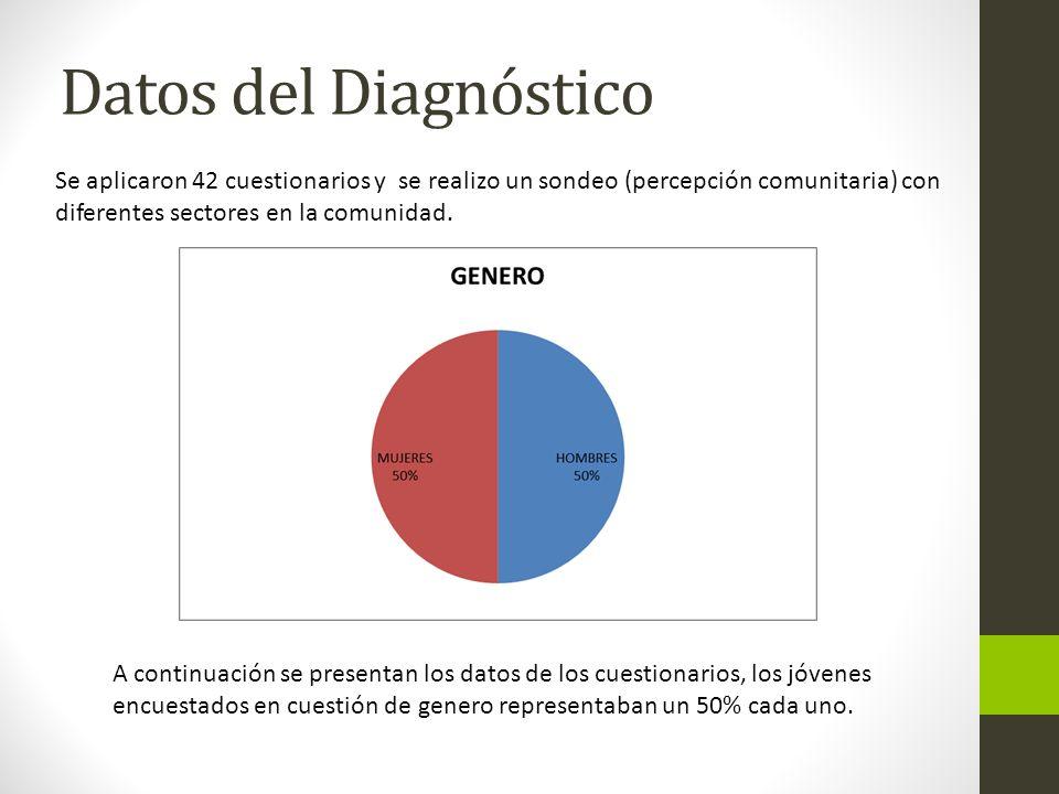 Datos del Diagnóstico Se aplicaron 42 cuestionarios y se realizo un sondeo (percepción comunitaria) con diferentes sectores en la comunidad.