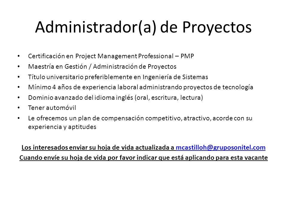 Administrador(a) de Proyectos