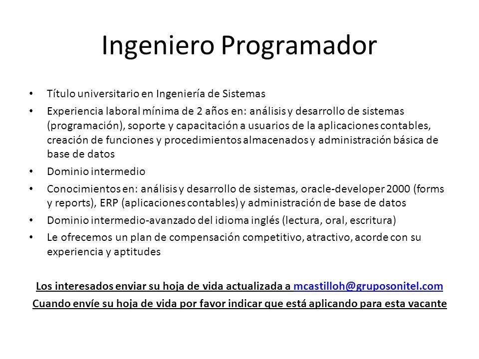Ingeniero Programador
