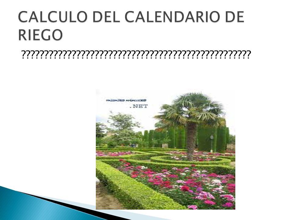 CALCULO DEL CALENDARIO DE RIEGO