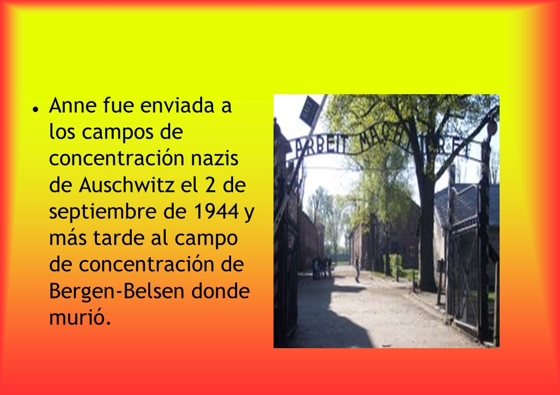 Anne fue enviada a los campos de concentración nazis de Auschwitz el 2 de septiembre de 1944 y más tarde al campo de concentración de Bergen-Belsen donde murió.