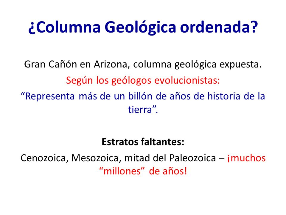 ¿Columna Geológica ordenada