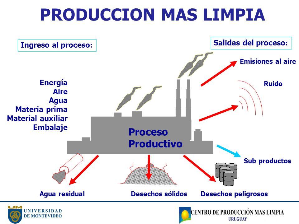 PRODUCCION MAS LIMPIA Proceso Productivo Salidas del proceso: