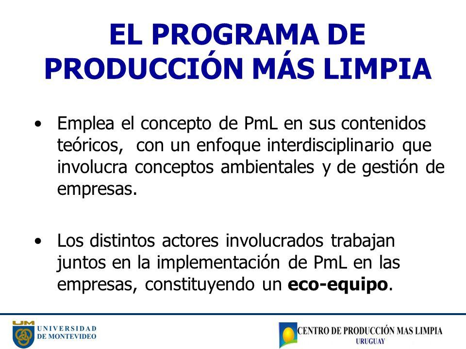 EL PROGRAMA DE PRODUCCIÓN MÁS LIMPIA