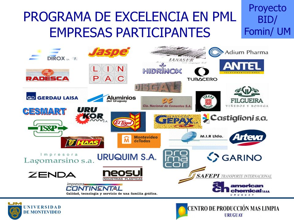 Programa de Excelencia en PML Empresas Participantes