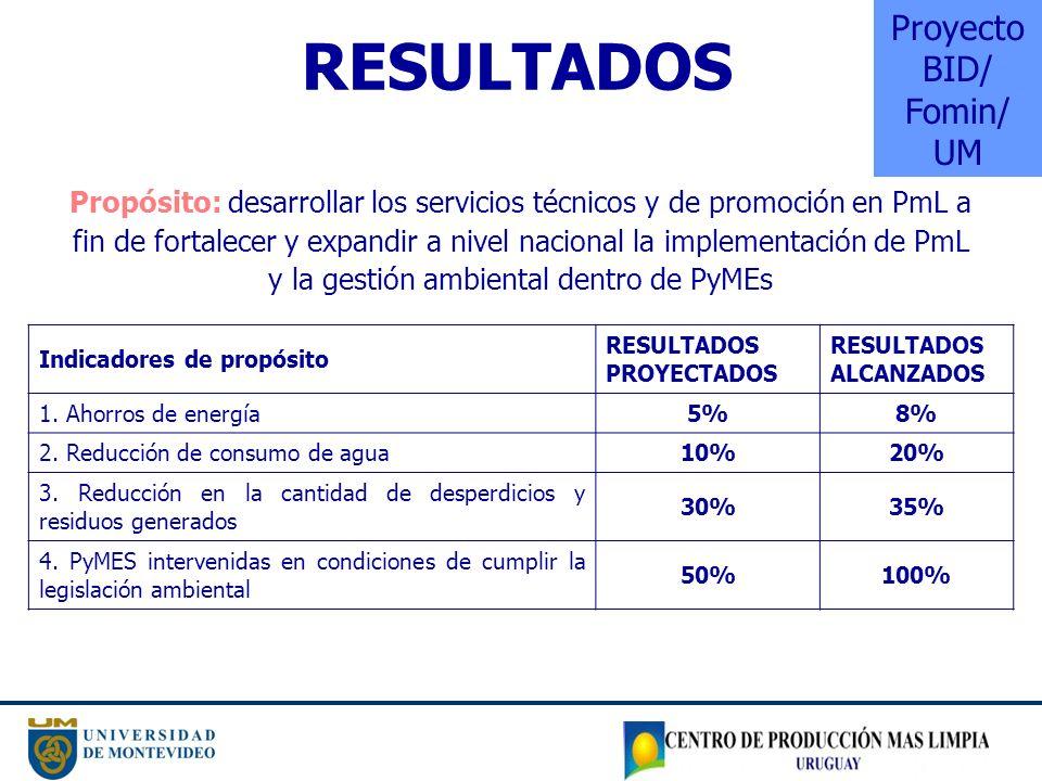 Proyecto BID/ Fomin/ UM