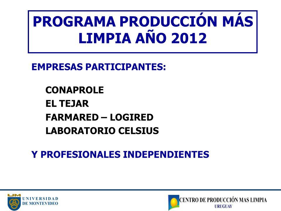 PROGRAMA PRODUCCIÓN MÁS LIMPIA AÑO 2012
