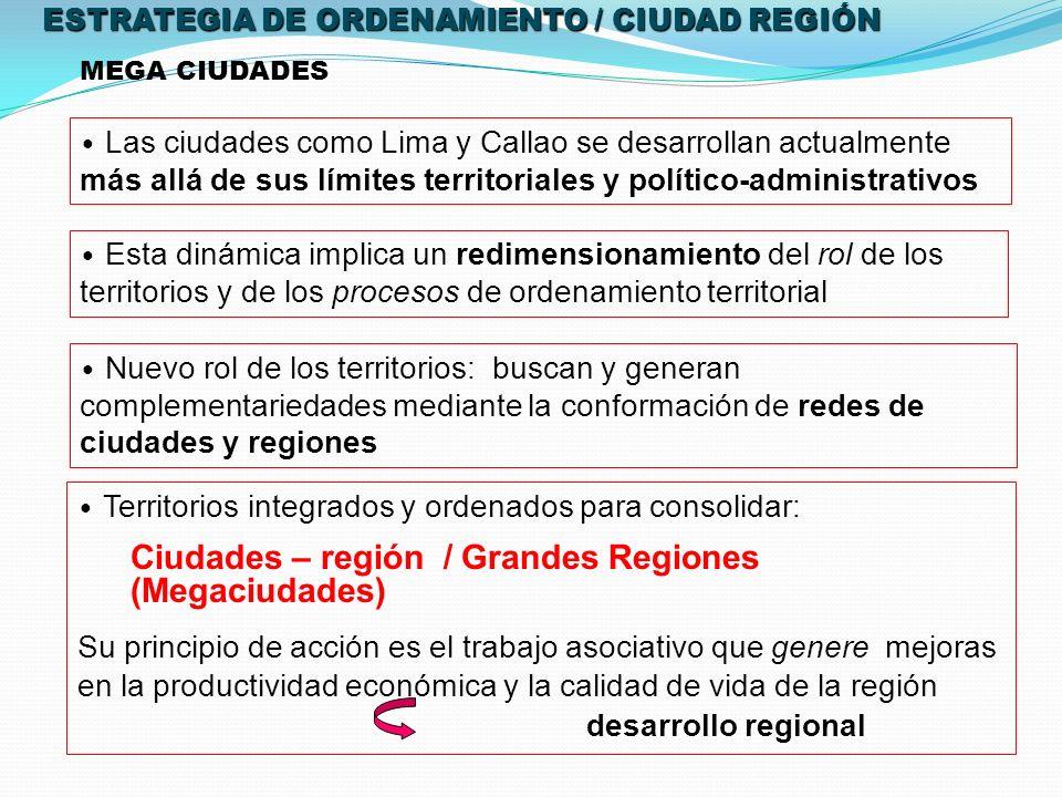 Ciudades – región / Grandes Regiones (Megaciudades)