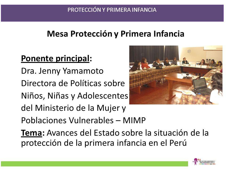 Mesa Protección y Primera Infancia